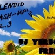 Playmen Vs Leventina - Fallin  (Yerbol Fresh Mash-up)
