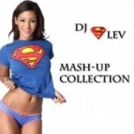 Pink & Dj Noiz ft. Dj Maxtal and Dj Smash ft. T-moor Rodrigez - Get The Party Started  (Dj SleV Mash Up)