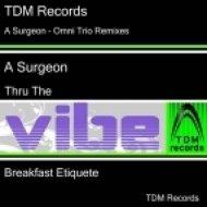 A Surgeon feat Omni Trio - Thru The Vibe ()