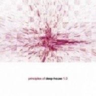 Steve Ward - The Colour I Like  (Original Mix)
