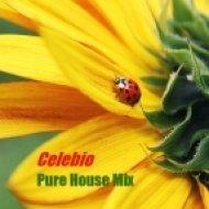 Celebio - Pure House Mix ()