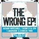 Adam Mitchell, Dom V, LTH - Check This  (Original Mix)