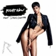 Rihanna (feat. David Guetta) - Right Now (Justyle Remix)