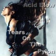 Acid Blow - Tears On The Pylon (Original mix)