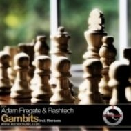 Adam Firegate & Flashtech - Gambits (Tensile Force Remix)