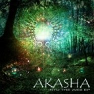 Akasha - Into the Web ()