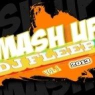 SHM, Tiesto vs. Purple Project & H.P. Baxxter - Antidote  ( DJ Fleep Mash-Up )