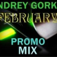 Dj Andrey Gorkin - February Promo Mix 2013 ()