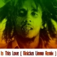 Bob Marley & The Wailers - Is This Love  (Vinicius Limma Remix)
