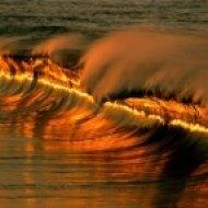 Sea Of Psilocybin - Change Wave From Sea  ()