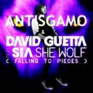 David Guetta feat. Sia vs. Nari & Milani - Atom Wolf  (Dj RiZoN MashUp)