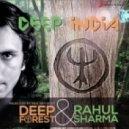 Deep Forest & Rahul Sharma - Punjab ()