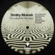 Dmitry Molosh - The Labyrinth  (Beat Syndrome Remix)
