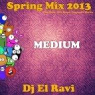 Dj El Ravi - Spring Mix 2013  Club House Tech House Progressive Electro MEDIUM ()