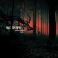 Black Sun Empire feat. Foreign Beggars - Dawn of a Dark Day  (Prolix Remix)