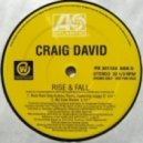Craig David ft. Sting - Rise & Fall  (MJ Cole Remix)