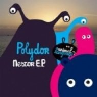 Polydor - Down Down ()