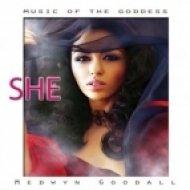 Medwyn Goodall - Awakening From The Dream ()