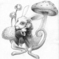 Jefferson Airplane  - White Rabbit  (SoundSAM Edit)