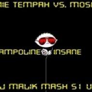 Tinie Tempah vs. Moska - Trampoline Insane  (DJ Malik Mash51 UP)