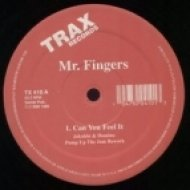 Mr. Fingers - Can You Feel It  (Jakobin & Domino\'s Pump Up The Jam Rework)