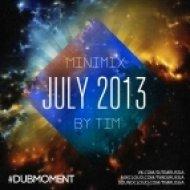 Tim  - Jule 2013 Minimix ()