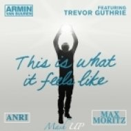 Armin van Buuren feat. Trevor Guthrie - This Is What It Feels Like  (Anri & Max Moritz Mash Up)