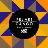 Pelari vs. Avicii & Nicky Romero - I Could Be The Cango  (Madhaus\'s ILFTW Bootleg)