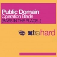 Public Domain - Operation Blade 2013  (D Session & Dj Cool Rework)