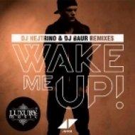 Avicii feat Aloe Blacc - Wake Me Up  (DJ Nejtrino & DJ Baur Remix)