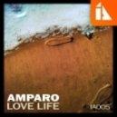 Amparo - Waiting For Winter ()