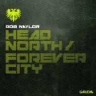 Rob Naylor - Head North  (Original Mix)