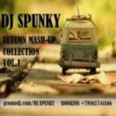 Relanium, Dj Viduta, Dj DimixeR, Amerie - Take Control  (Dj Spunky Mash-Up)