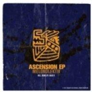 Melokolektiv - Ascension  (David K Remix)