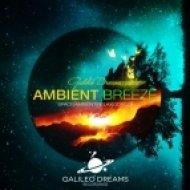 Healing Energy Music - Flight of the Albatross  (Original Mix)