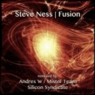 Steve Ness - Fusion  (Silicon Syndicate Remix)