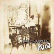 The Molecule Proj. - Love Is A Vision  (ft. Bella Sky)