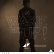 Avicii - Wake Me Up  (Original Extended Mix)