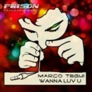 Marco Tequi - Wanna Luv U  (Original Mix)