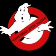 Purple Project vs. Ray Parker Jr. - Ghostbusters  (Mainstream Bitch Mashup)