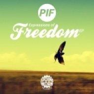 PIF - Get High  (Original Mix)