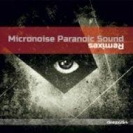 Michael Burkat - Room 29  (Micronoise Paranoic Sound Remix)