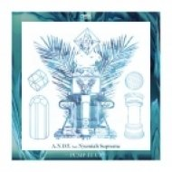 A.N.D.Y., Nyemiah Supreme - Pump It Up  (Daryl Remix)