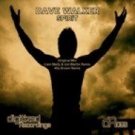 Dave Walker - Spirit  (Original Mix)