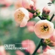 Calippo - Looking for a Meaning  (Original Mix)