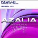 Paw Luk - Crisis Of Valuables  (Original Mix)