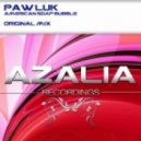 Paw Luk - American Soap Bubble  (Original Mix)
