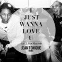 Jay-Z Feat. Pharrell - I Just Wanna Love U  (Jean Tonique Remix)