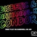 Bisbetic, Nathanael K - Condor  (Original Mix)