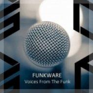 Funkware  - Sound Of Love (feat. Albert Tempel - Original Mix) (Original Mix)